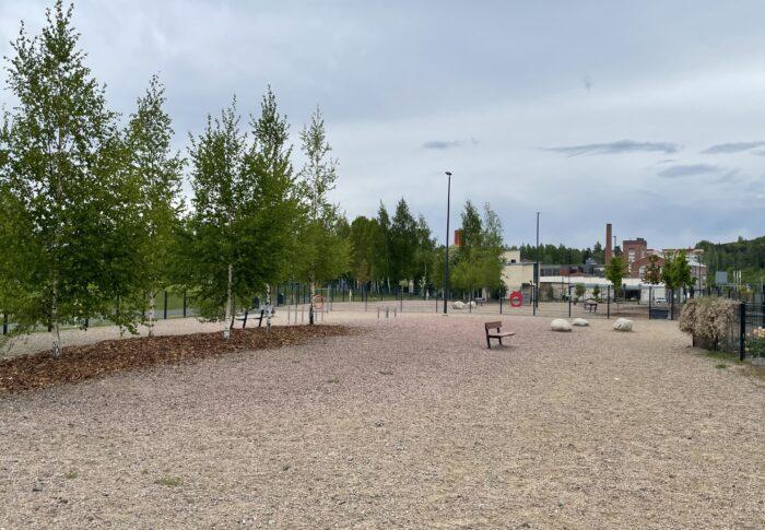 フィンランドのドッグラン 広々〜景色も最高です。