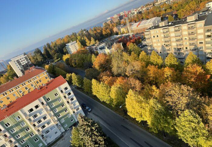 タンペレの秋を感じて フィンランド生活備忘録